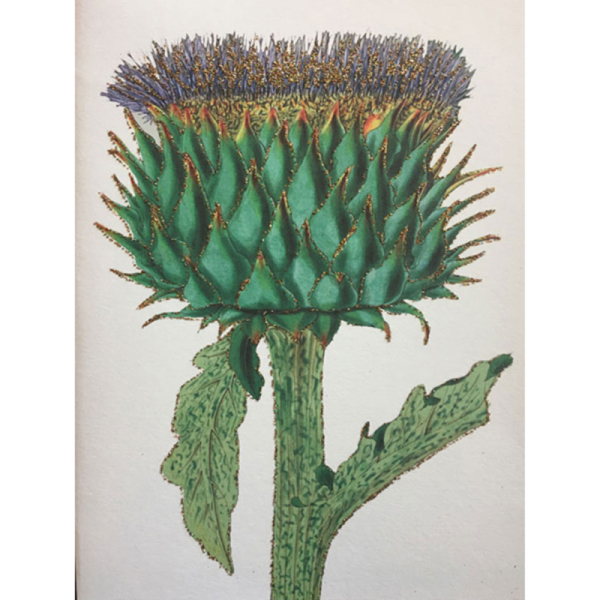 Artichoke Greetings Card