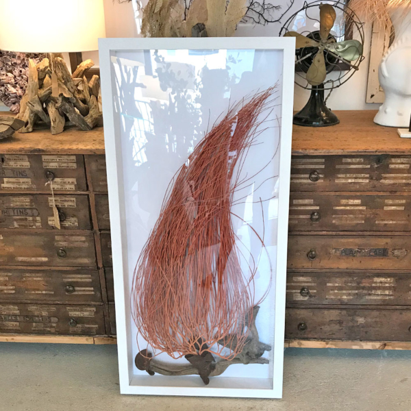 EMMIT - Framed Large Orange Seafan