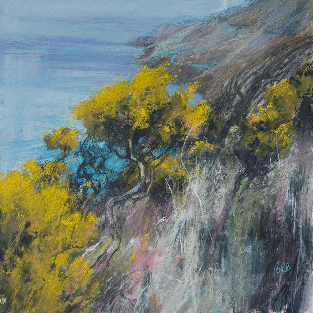 Loud Gorse at Start Point